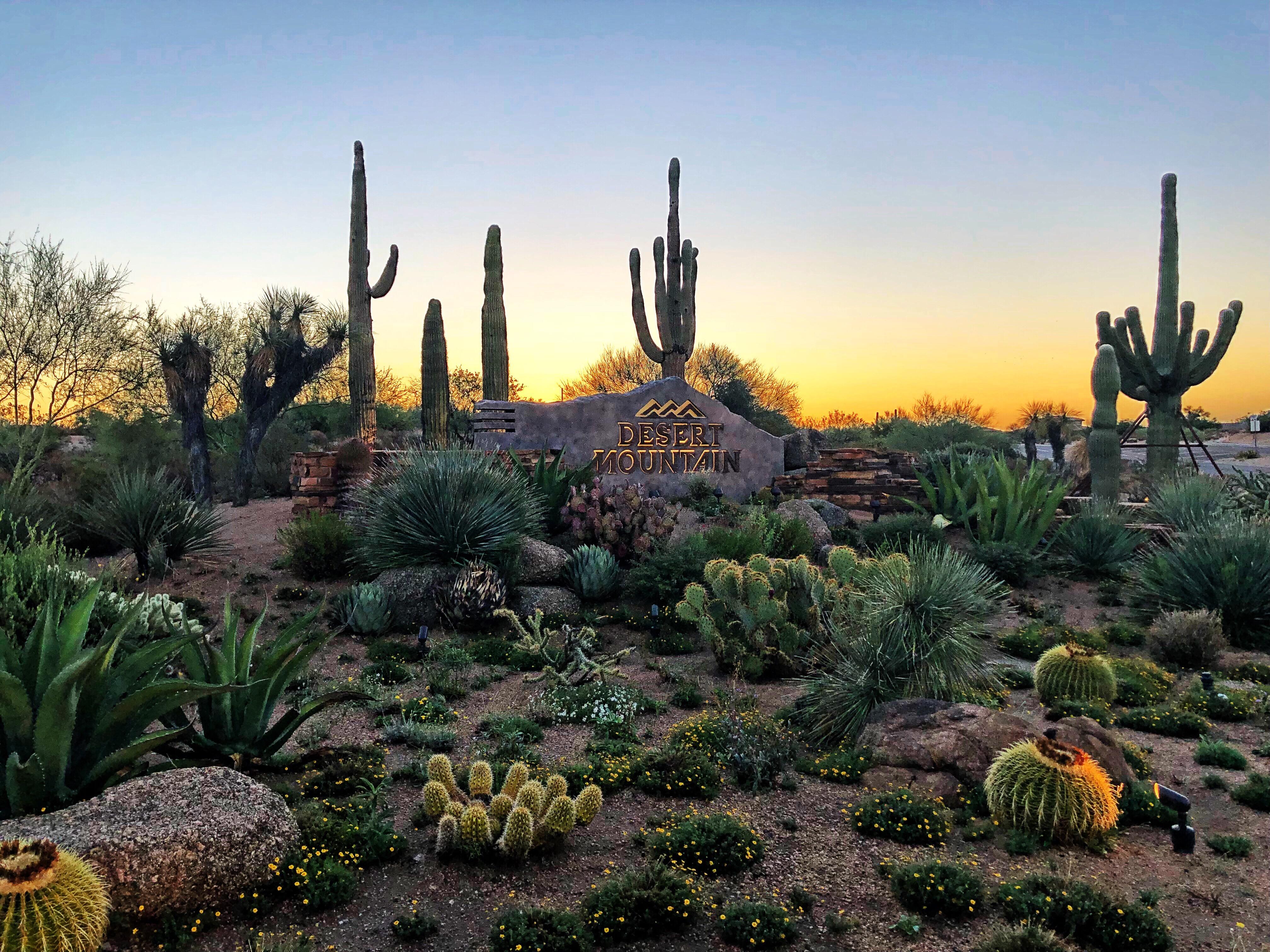 Desert Mountain Scottsdale Homes