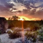 Windgate Ranch Homes for Sale Scottsdale AZ