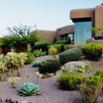 Scottsdale NEW Listings to hit the Market